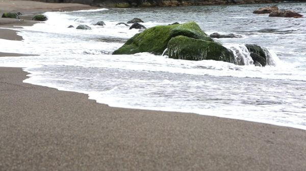 Beach  sand  waves video