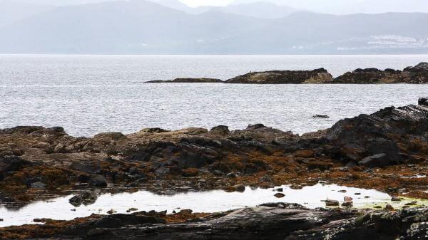 Rocks  shore  beach video