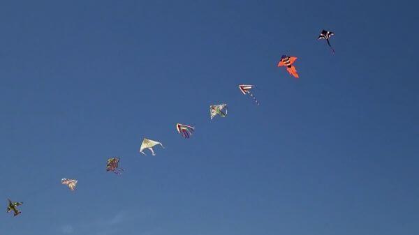 Kites  summer  child video