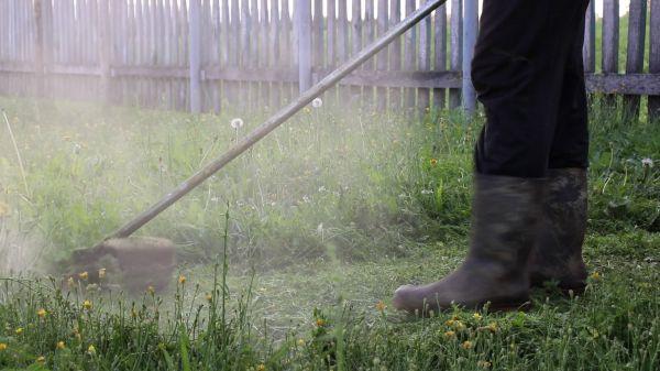 Trimmer  lawnmower  lawn video