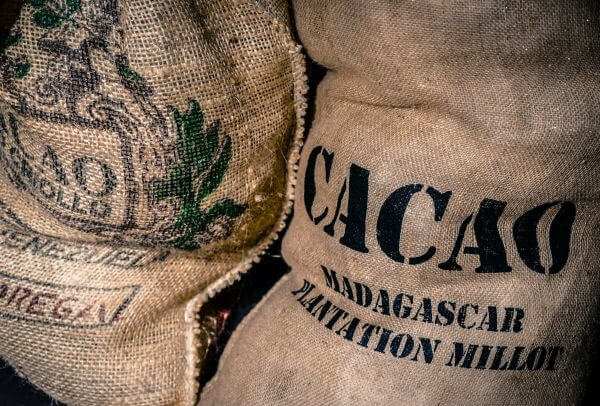 Cacao bags photo