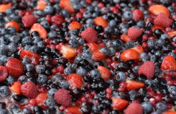 Forest berries photo
