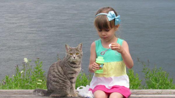 Girl  cat  soap bubbles video