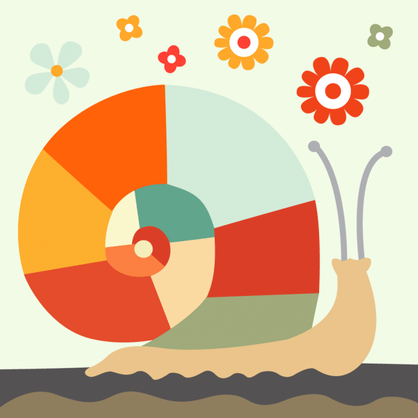 colorful snail vector