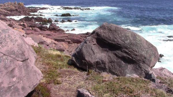 Coastline  rugged  waves video