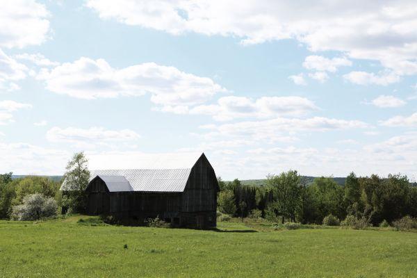 Lost barn photo