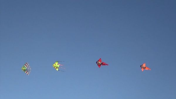 Kites  fun  happy video