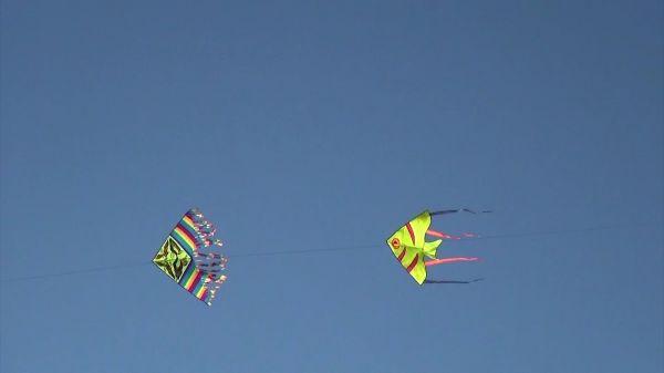 Kites  summer  sky video