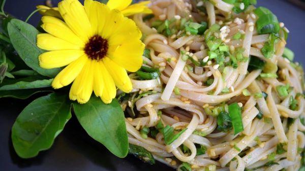 Noodle  salad  dish video
