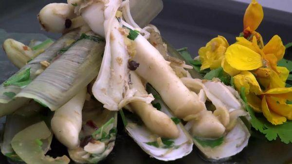 Razor  clams  seafood video