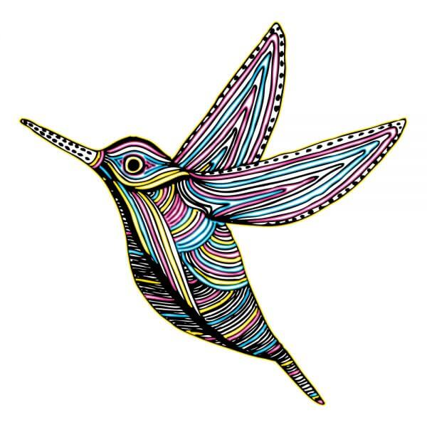 CMYK Colibri Bird Flying vector