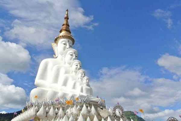 5 Buddha  photo