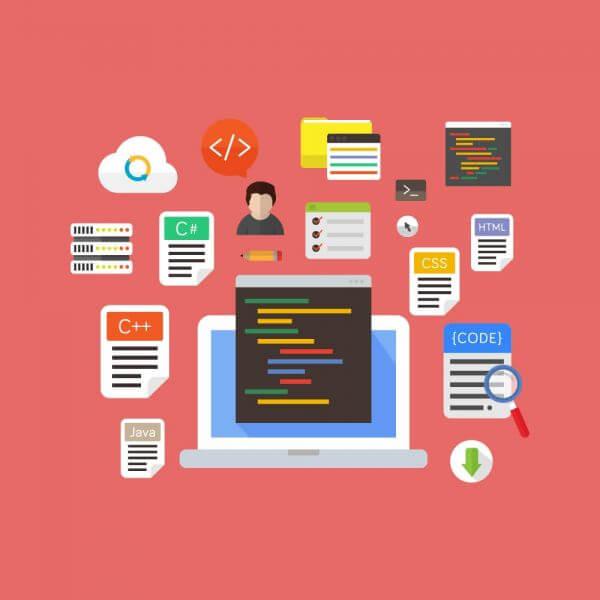 Computer Programming vector