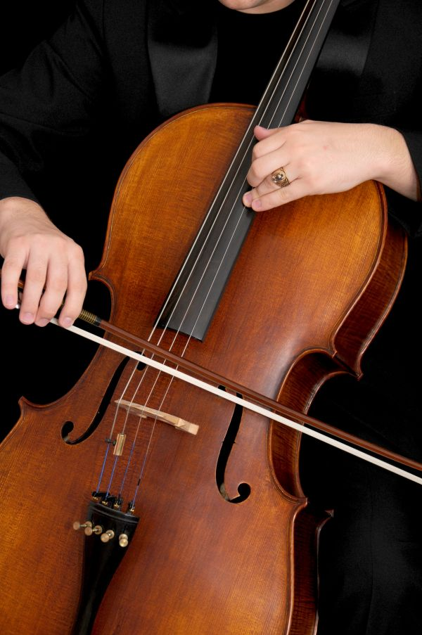 Bowed string instrument photo