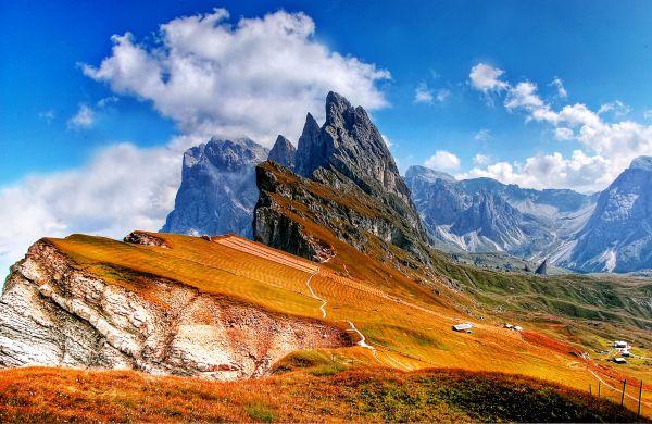 Alp photo