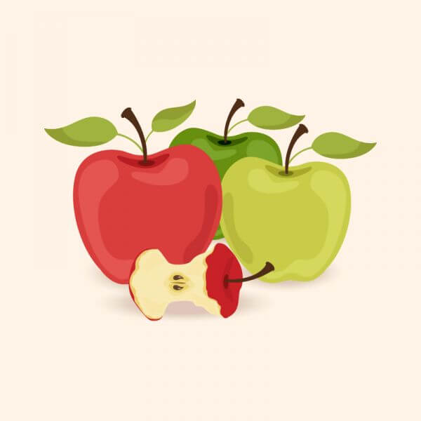 Vector illustration with apples vector