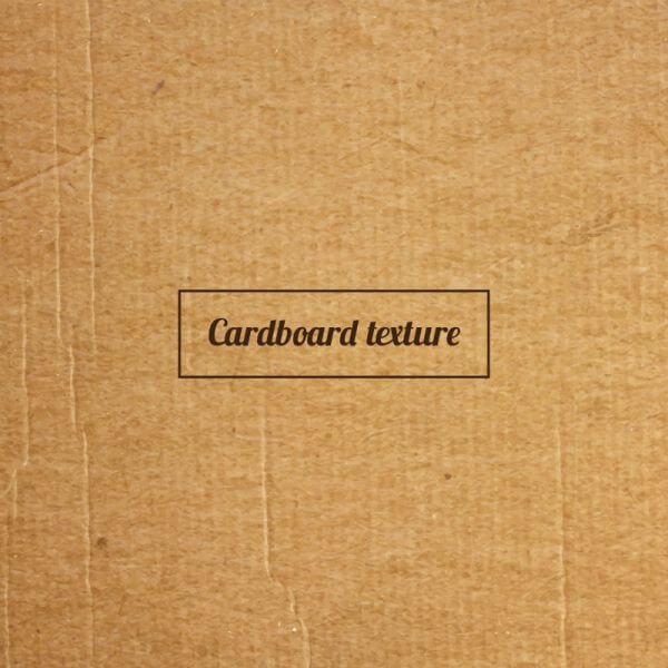 Cardboard texture or background vector