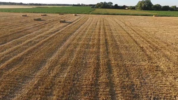 Hay  field  harvest video