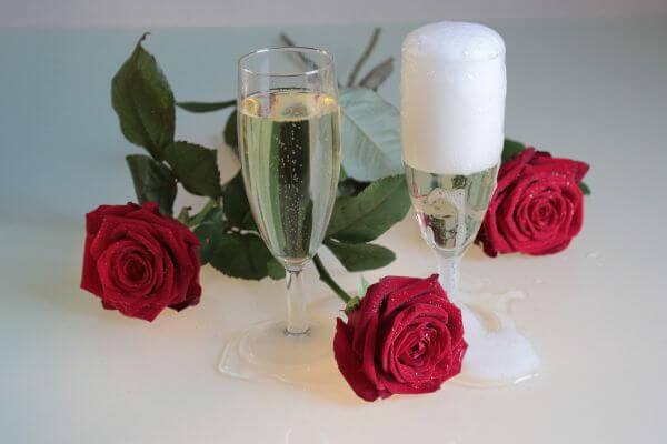 Roses Against White Rose photo