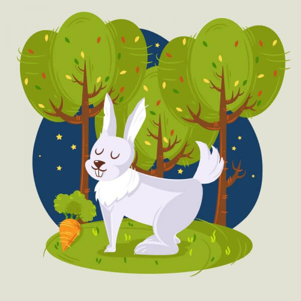Rabbit in the woods vector illustration vector