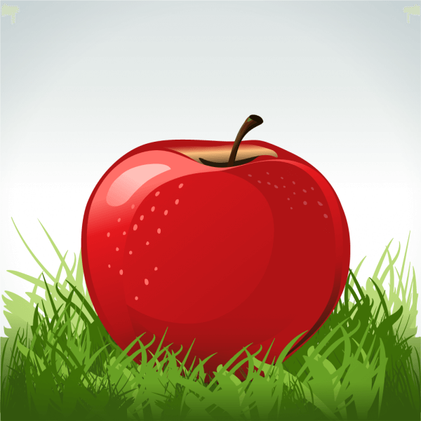 Red apple in green grass vector