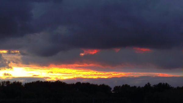 Autumn  dawn  evening video