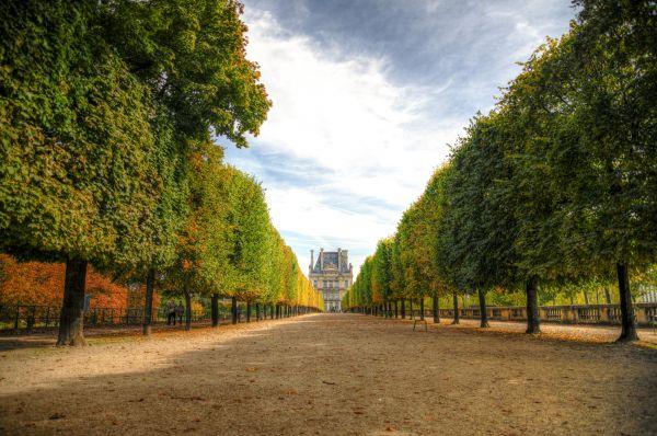 Lane to Louvre photo