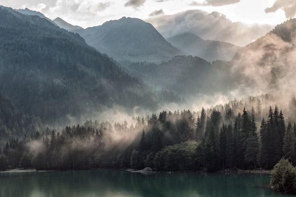 Morning Mist Tree Mountains Clouds photo