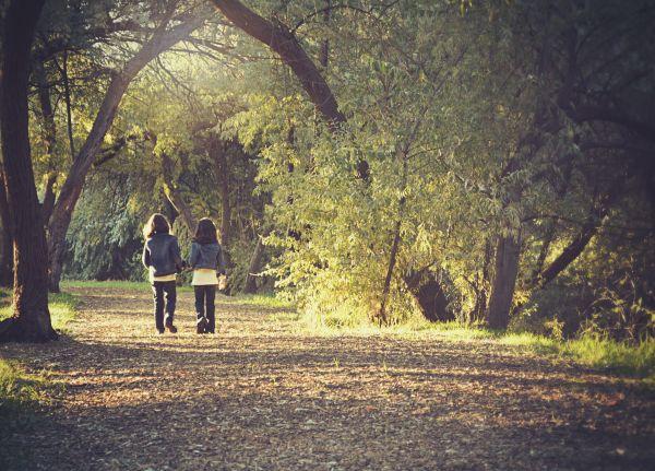 Children Kids Walk Forest Trail photo