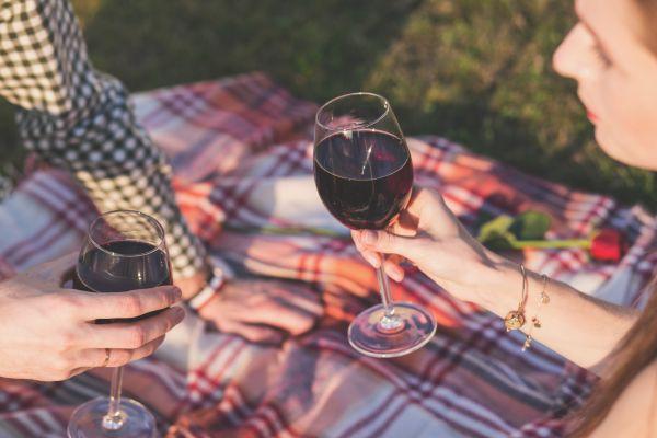 Picnic Blanket Man Woman Wine photo
