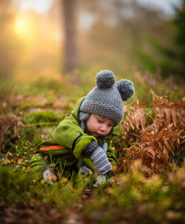 Child Boy Playing Forest photo