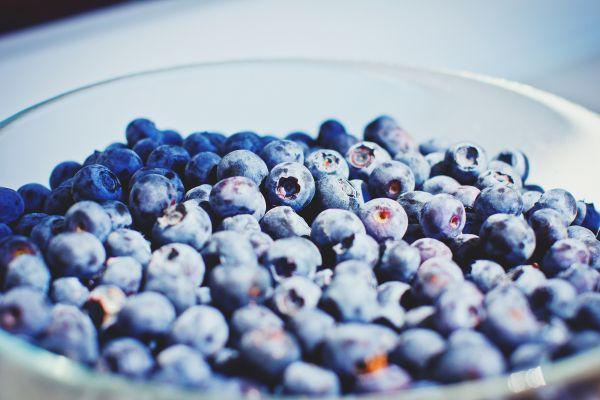 Blueberries Bowl photo