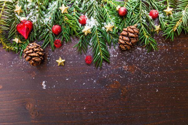 Brown Pine Christmas Decoration photo