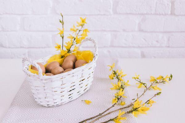 White Basket Eggs photo