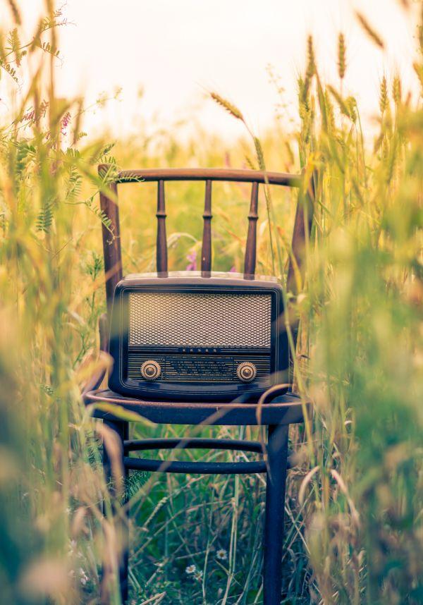 Retro Radio Dial Field photo