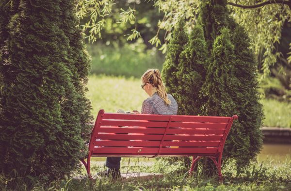 Woman Reading Red Park Bench photo