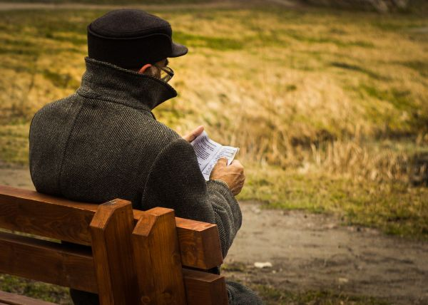 Old Man Reading Book Park Bench photo