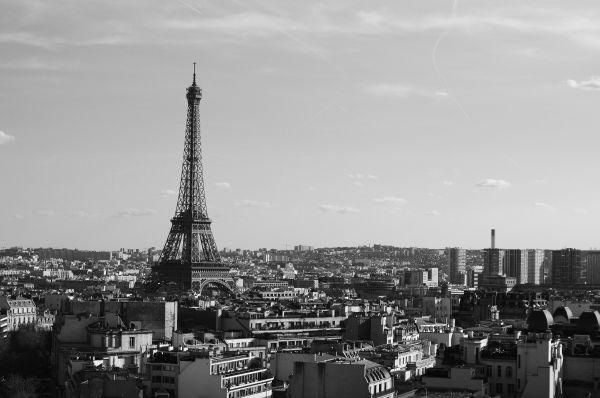 Black White Eiffel Tower Paris photo