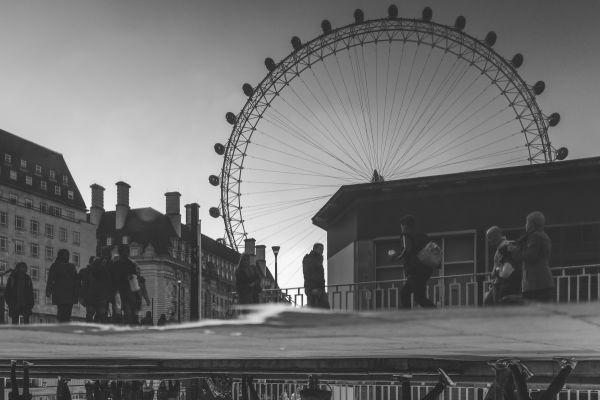Black White Big Wheel photo