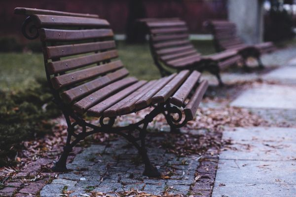 Empty Benches in Park photo