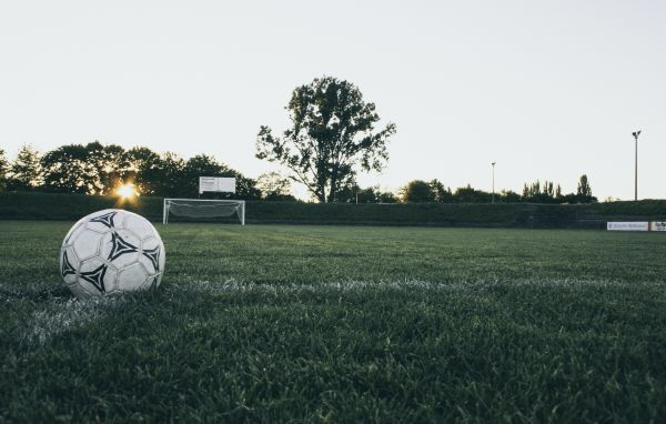 Black and White Soccer Ball on Grass photo