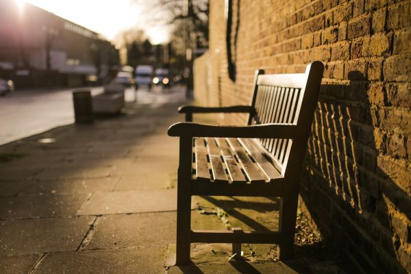 Park Bench During the Golden Hour photo