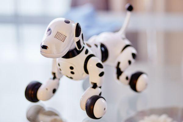 White & Black Robot Dog photo