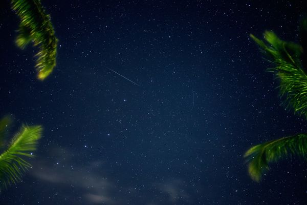Shooting Stars photo