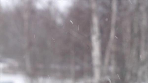 Winter  snow  snow rain video