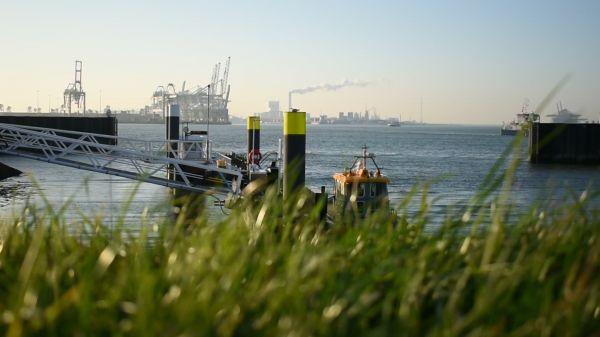 Port  rotterdam  shipping video