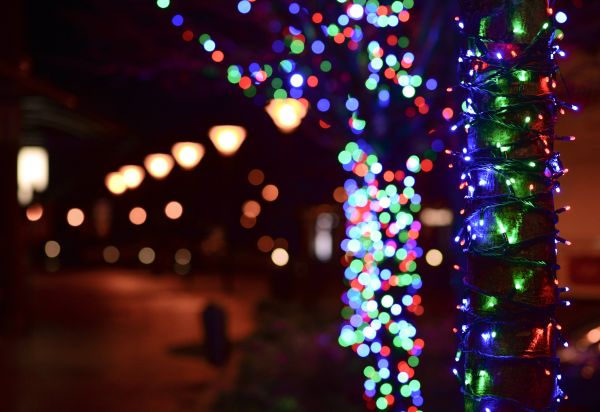 Christmas lights photo