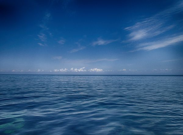 Blue Sea photo