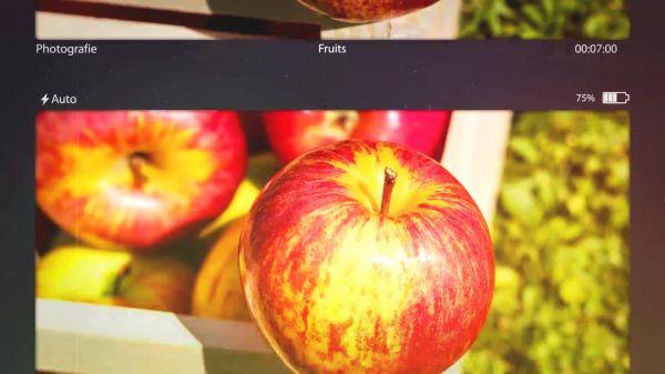 Photography  photographer  portfolio video