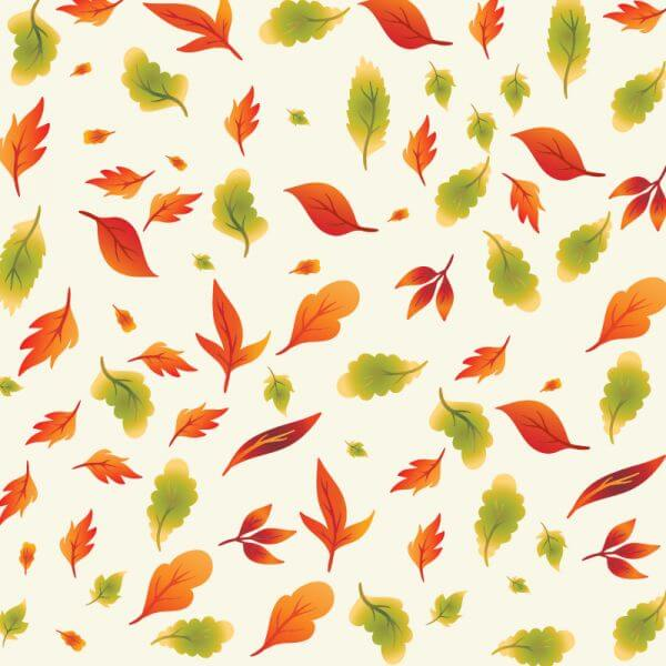 Nature Leaves Illustration vector